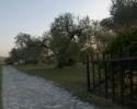 montelibretti 2012 marzo